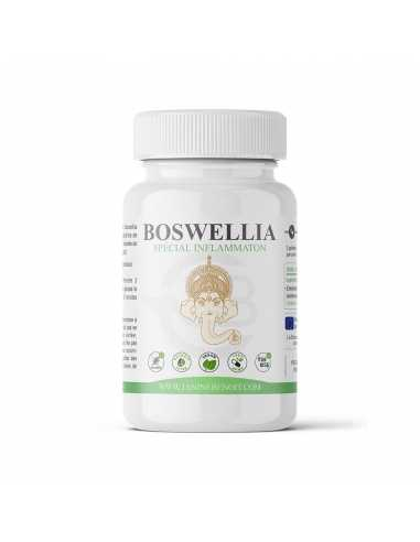 Boswellia - Complément alimentaire en gélules